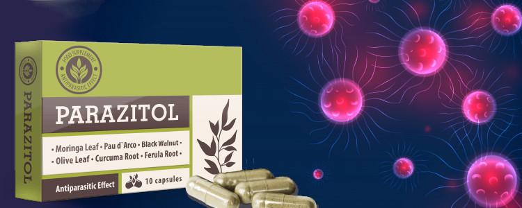 Les effets sont visibles après la première utilisation Parazitol.
