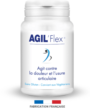 Qu'est-ce que c'est Agil Flex? Quand ça va marcher?